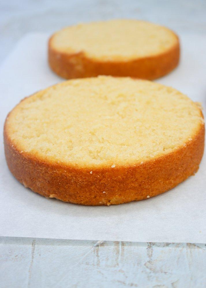 vanilla cake rounds